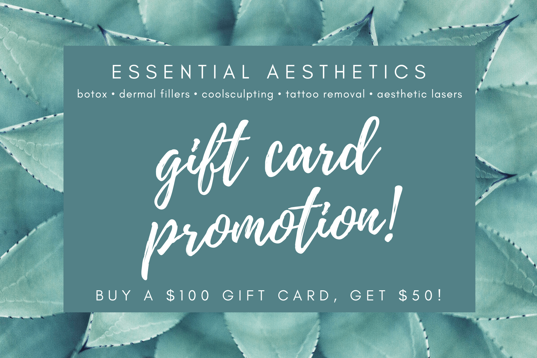 Winter Gift Card Special